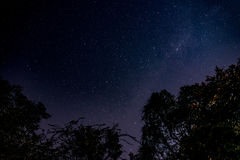 Sterne stockfotografie
