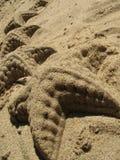 Sterne auf dem Sand Lizenzfreie Stockfotos