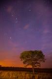 Sterne an der blauen Stunde Stockfotografie