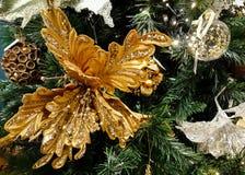 Sterne, Kiefern, Bälle, Spitzee hängen am Weihnachtsbaum stockfotografie