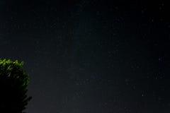 Sterne mit Milch Stockfotos