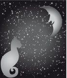 Sterne, Mond und Katze vektor abbildung