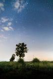 Sterne nachts auf dem Feld Lizenzfreie Stockbilder
