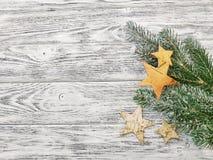Sterne und Kiefernniederlassungen - schöner Winterhintergrund stockfoto
