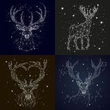 Sternenklare Himmelkonstellationsrotwild Lizenzfreie Stockbilder
