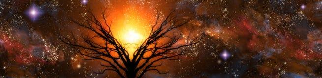 Sternenklare Landschaft Stockbilder