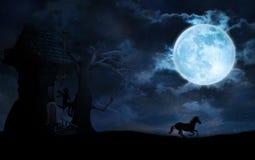 Sternenklare Nacht mit Mond, Fee und Einhorn lizenzfreie abbildung
