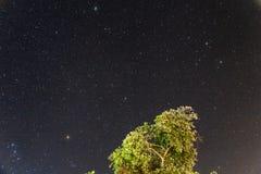 Sternenklare Nacht stockfotos