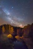 Sternenklare Nachtlandschaft Stockfotos