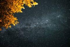 Sternenklarer Himmel lizenzfreie stockfotos