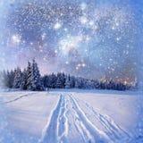 Sternenklarer Himmel in der schneebedeckten Nacht des Winters Stockbild