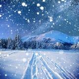 Sternenklarer Himmel in der schneebedeckten Nacht des Winters Lizenzfreie Stockbilder