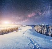 Sternenklarer Himmel in der schneebedeckten Nacht des Winters Fantastische Milchstraße Stockfotografie