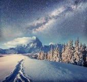 Sternenklarer Himmel in der schneebedeckten Nacht des Winters Fantastische Milchstraße Lizenzfreies Stockbild