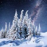 Sternenklarer Himmel in der schneebedeckten Nacht des Winters Fantastische Milchstraße Stockfoto