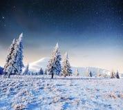 Sternenklarer Himmel in der schneebedeckten Nacht des Winters Fantastische Milchstraße Lizenzfreie Stockfotografie
