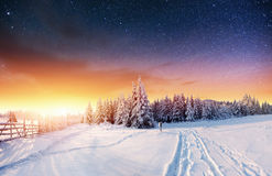 Sternenklarer Himmel in der schneebedeckten Nacht des Winters Fantastische Milchstraße Stockbild