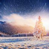 Sternenklarer Himmel in der schneebedeckten Nacht des Winters Fantastische Milchstraße im neues Jahr ` s Eve In Erwartung des Fei Lizenzfreie Stockfotografie
