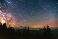 Sternenklarer Himmel durch die Bäume lizenzfreie stockfotografie