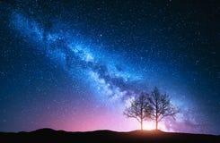 Sternenklarer Himmel mit rosa Milchstraße und Bäumen Stockfoto