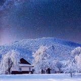 Sternenklarer Himmel und ein Baum im Frost am schönen Haus im Wald in der Mitte des Winters Stockfoto