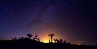 Sternenklarer nächtlicher Himmel Wüste Marokkos Sahara über der Oase Travellin lizenzfreies stockfoto