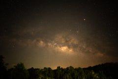 Sternfeld über Wald nachts Stockfoto