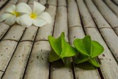 Sternfrüchte und Frangipaniblumen Lizenzfreie Stockfotografie