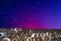 Sternspur und -wein Lizenzfreie Stockbilder