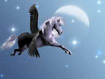 Sterrelicht Pegasus Stock Afbeeldingen