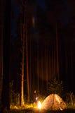 Sterrelichtnacht royalty-vrije stock foto