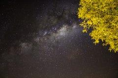 Sterren bij nacht Stock Afbeeldingen