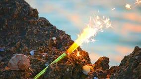 Sterretje op overzeese rots en spiraalvormige shell voor zonsondergangoverzees stock footage