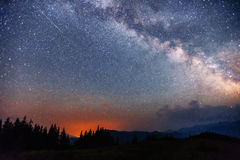 Sterrige hemel door de bomen Stock Afbeelding