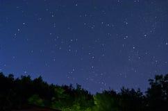 Sterrige hemel over het hout Royalty-vrije Stock Foto's
