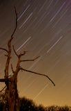 Sterrige Nacht Royalty-vrije Stock Afbeeldingen