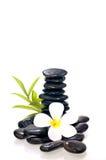 Sterta czarny zen kamień z biały kwiatem Obraz Royalty Free