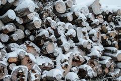 Sterta drewna cięcie z śniegiem zdjęcie stock