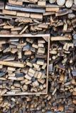 Sterta drewno z różnym fuelwood obrazy stock