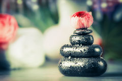 Sterta gorący kamienie z frowers pączkuje przy zdroju wellness tłem zdjęcia royalty free