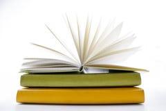 Sterta hadrback książki na białym tle Biblioteczny edukaci pojęcie tylna szkoły kosmos kopii fotografia royalty free