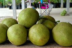 Sterta jackfruit w Thailand zdjęcie stock