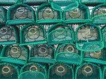 Sterta Nowi homarów garnki zdjęcia stock