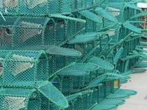 Sterta Nowi homarów garnki Na schronieniu zdjęcie royalty free