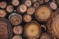Sterta round drewniane ogień bele Fotografia Stock