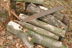sterty drewno Fotografia Stock