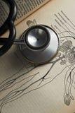 Stethoscope Royalty Free Stock Photo