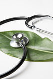 Stethoscope on a leaf Royalty Free Stock Photography