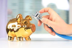 Stethoscope and piggybank. Stock Photography