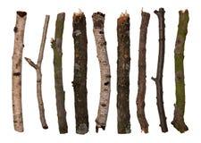 Steuerknüppel und Zweige stockfoto
